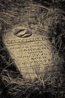 pioneer, cemetery