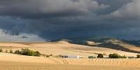 clouds, Blue Mountains, Walla Walla, Washington, thunderhead, wheat, harvest