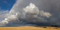 thunderhead, Blue Mountains, Walla Walla, Washington, cloud, harvested, blue