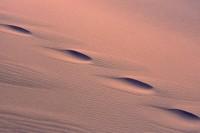 Death Valley National Park, California, sand dunes, footprints