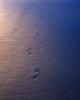 Second Beach, Olympic National Park, Washington Coast, footprints, light, shadow, Pentax 67