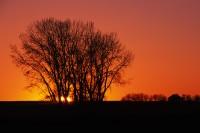 Galpin, Glasgow, eastern Montana, silhouette, sunset