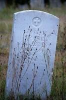 Orting, soldier, veteran, cemetery, tombstone, weeds