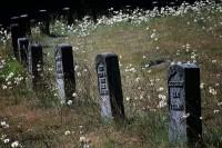 veterans, cemetery, Orting, tombstones