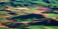 Palouse, eastern Washington, farmhouse, Steptoe Butte, sunset, spring, farmland, Washington