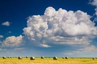 thunderhead, hay, bales, eastern Montana