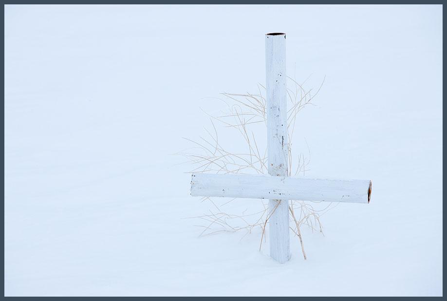 winter, weeds, cross, pioneer, cemetery, Umatilla, OR