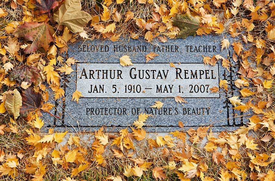 Arthur Rempel, Rempel, Walla Walla, Whitman College, leaves, birch