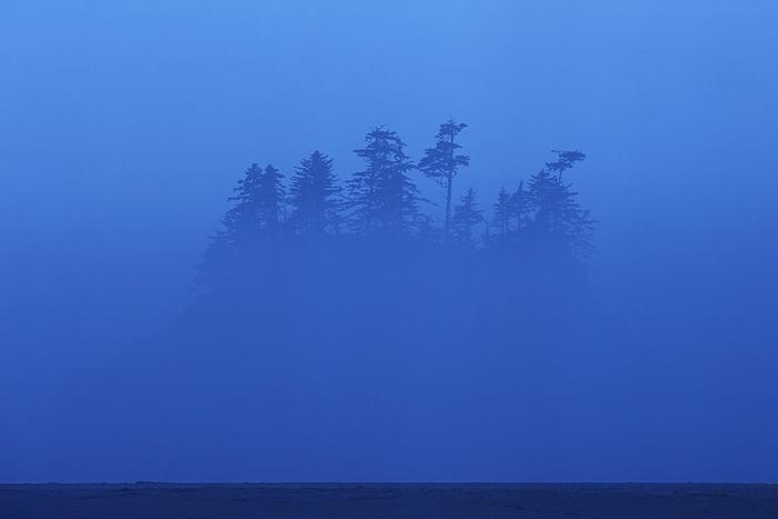 Second Beach, Olympic National Park, Washington Coast, fog